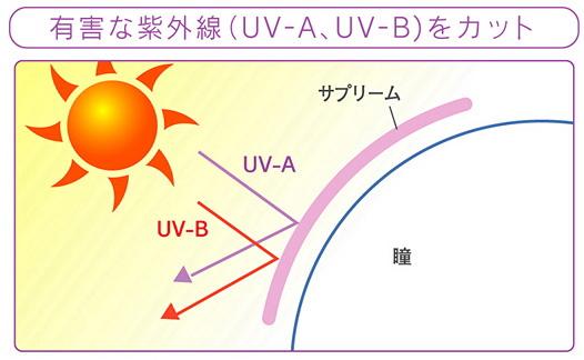 紫外線を防ぐUVカット