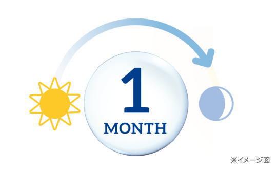 交換時期がわかりやすい1ヶ月タイプ