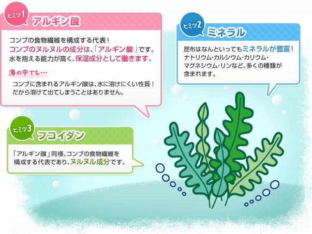 うるおい成分は海藻類からのアルギン酸